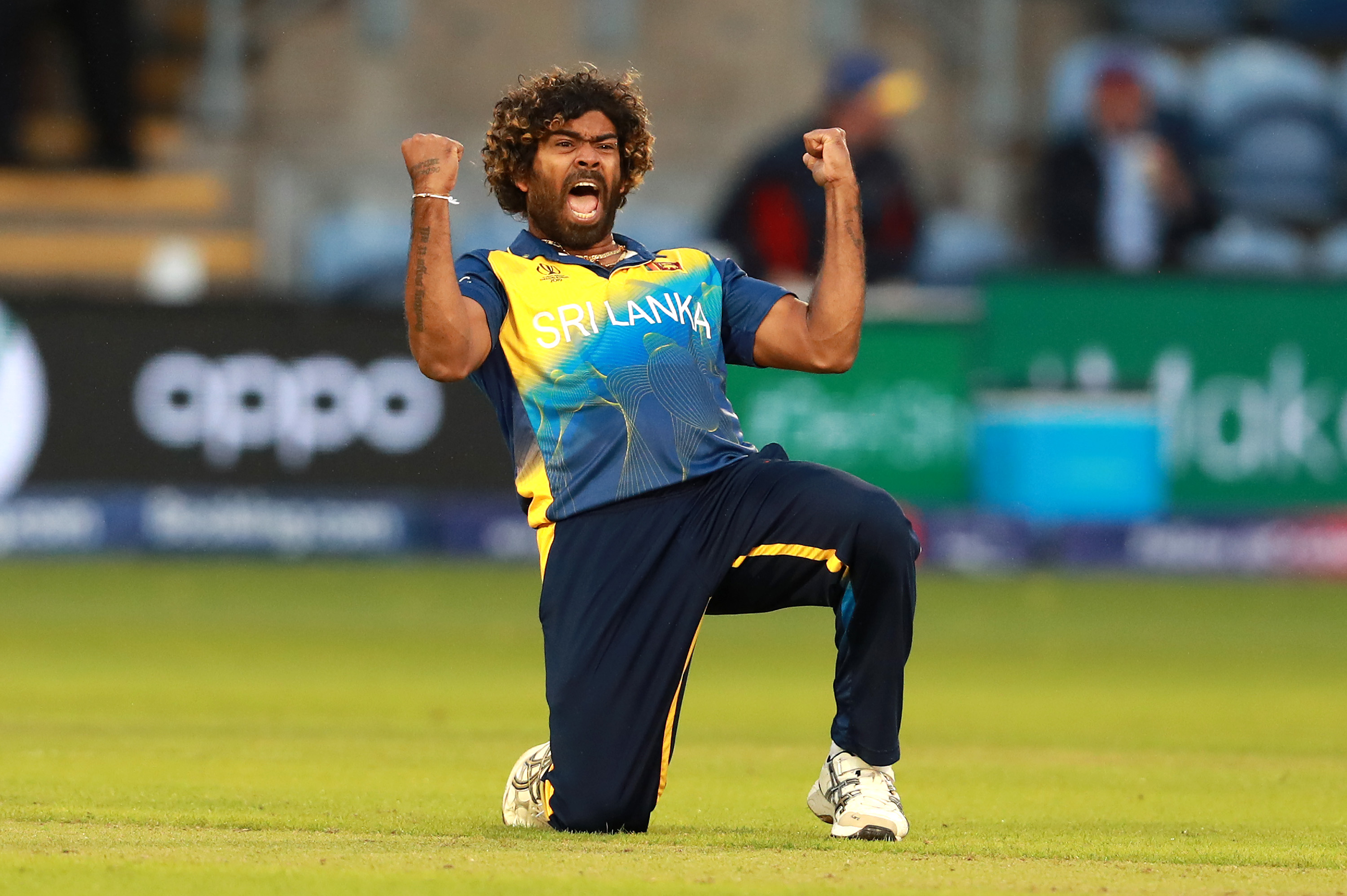 Image result for malinga odi 5 wicket haul