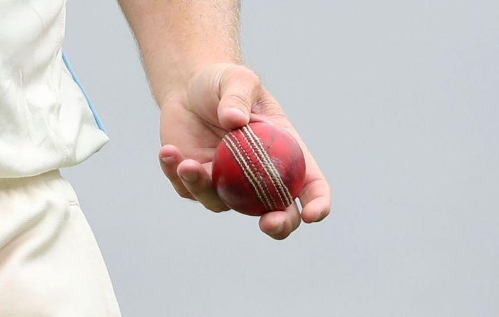Vegan Cricket Ball