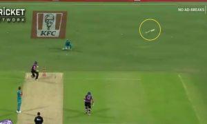 BBL 2019-20: Qais Ahmed Bat Flying Into The Air At The Gabba