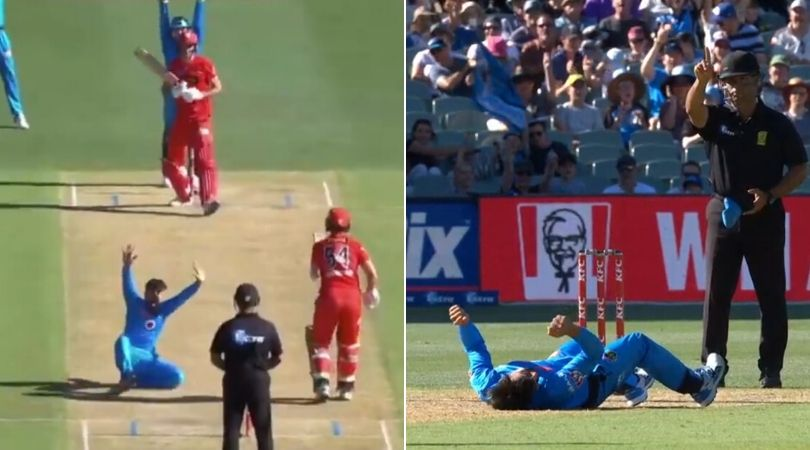 WATCH- Rashid Khan falls down hilariously while appealing in BBL 2019