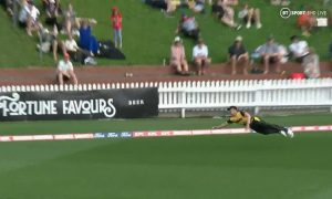 Logan Van Beek stuns everyone with an unbelievable catch in New Zealand's Super Smash League